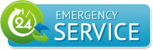 home_emergency_icon
